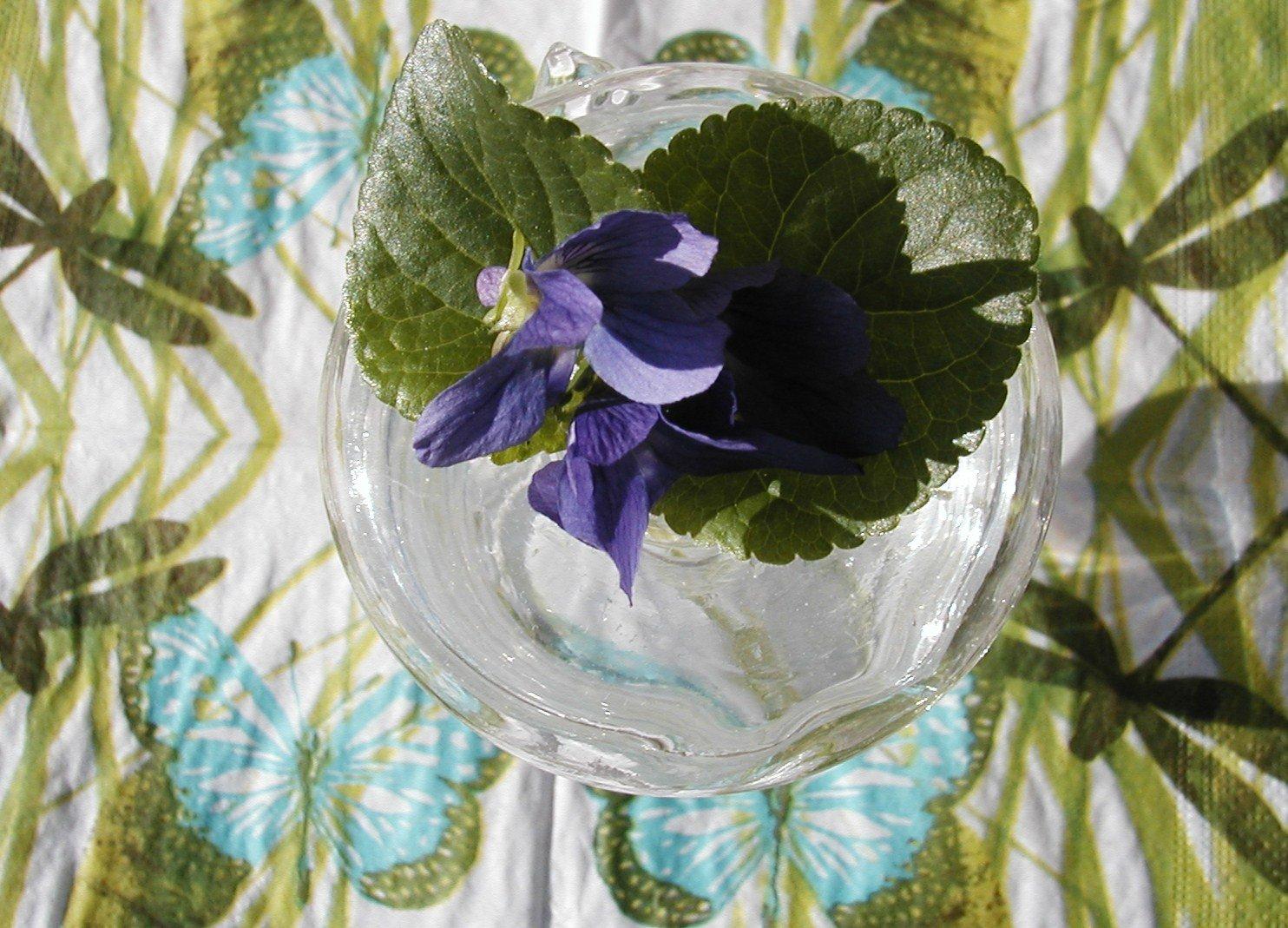 bouquetdeviolettes21.jpg