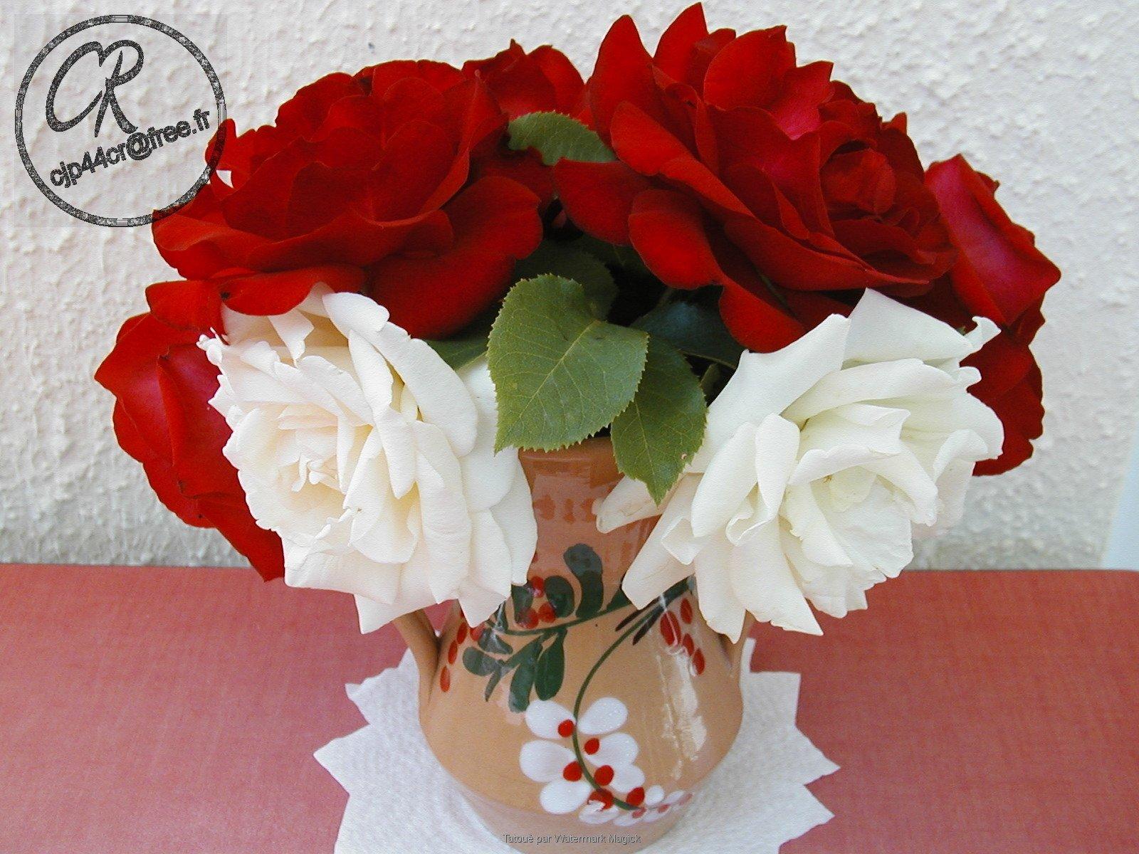 bouquetde7roses91.jpg